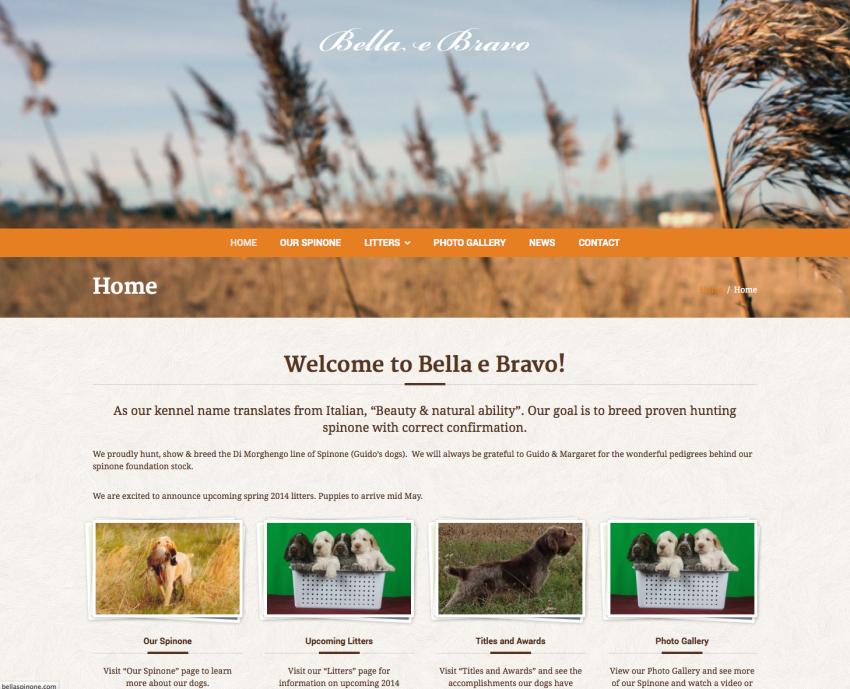 Spinoni Italiano Website